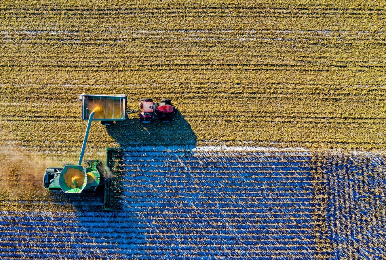 Italian AgriTech