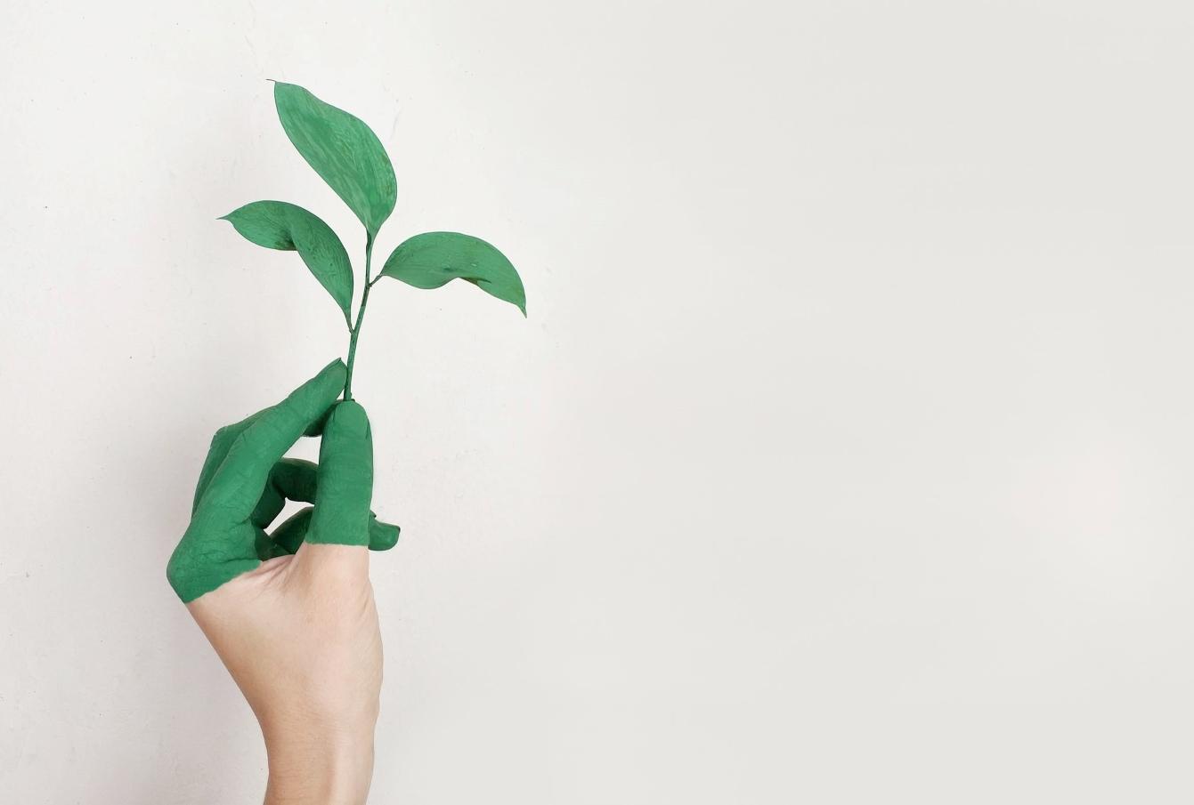 leadership in circular economy
