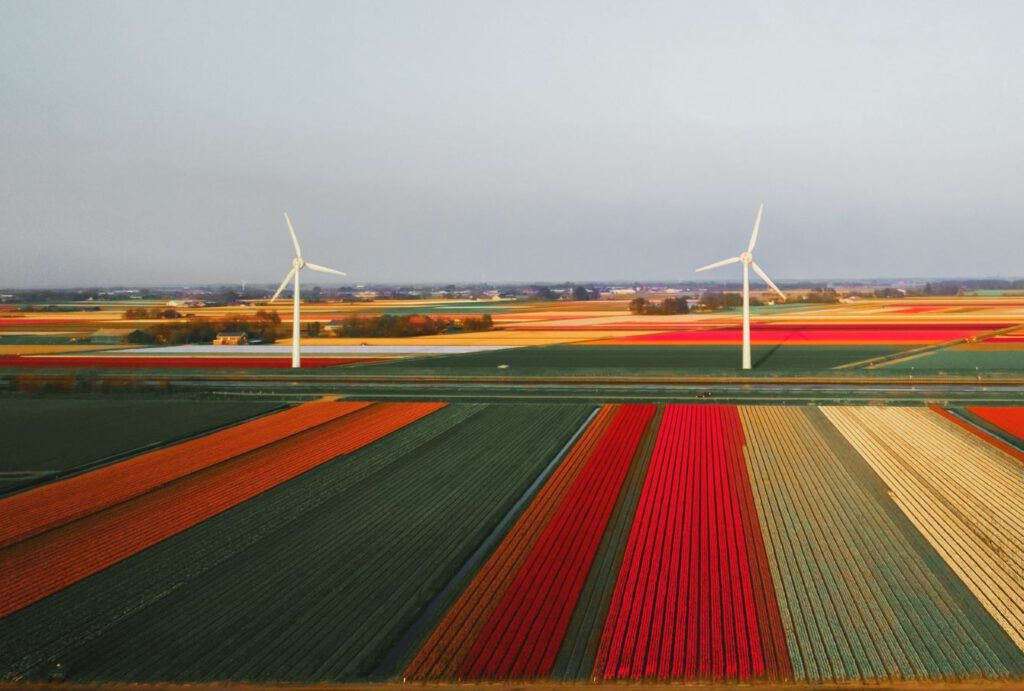 The Netherlands are specialised in Agriculture